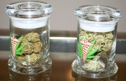 Jars of medical marijuana on display at a Richmond dispensary. (photo by Natalie Jones)
