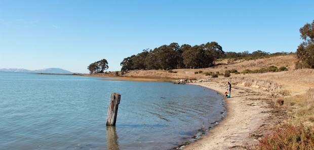 A view of the Point Pinole shoreline on a recent weekend.