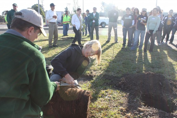 Volunteer Matthew Strauder, left, and certified arborist Molly Batchelder give a tree-planting demonstration to about 80 volunteers. (Photo by: Kevin N. Hume)