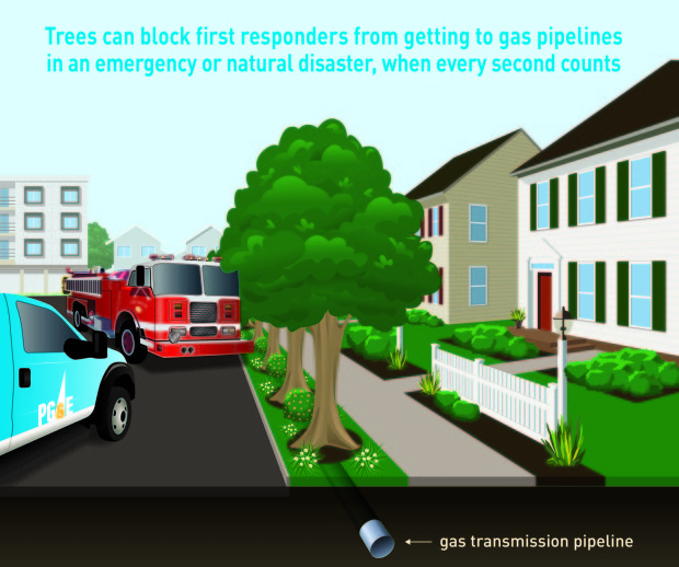 PG&E used graphics to show how inconvienent vegetation can be when first responders need to deal with emergencies. (Image courtesy of PG&E)