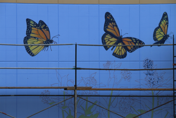 "John Wherle has been painting murals since he moved to Richmond in 1988. Now 75 years old, the artist says he is in the ""twilight of his career,"" and still prefers to work alone. He can be seen painting his butterfly-themed mural at 3230 Macdonald Avenue."
